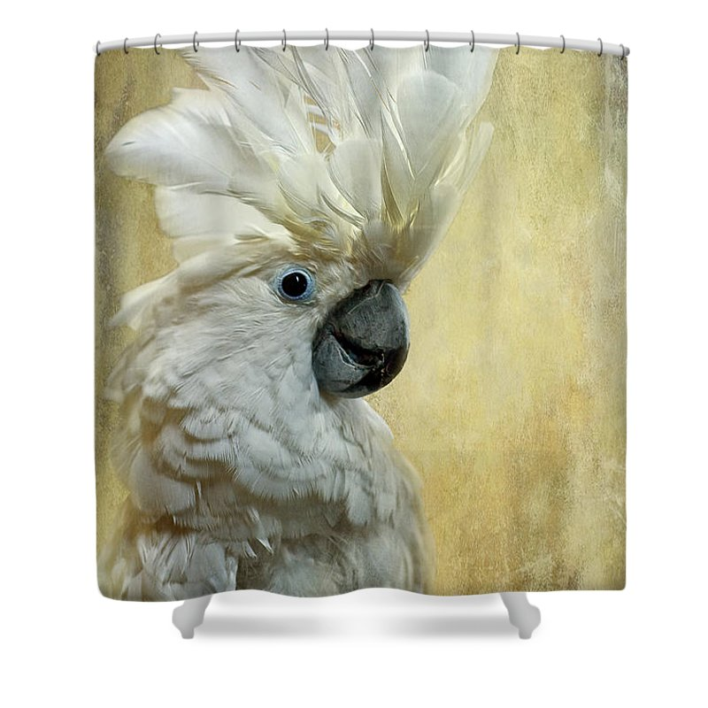 Cockatoo Shower Curtains