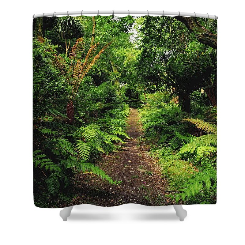 Co. Kerry Shower Curtain featuring the photograph Glanleam, Co Kerry, Ireland Pathway by The Irish Image Collection