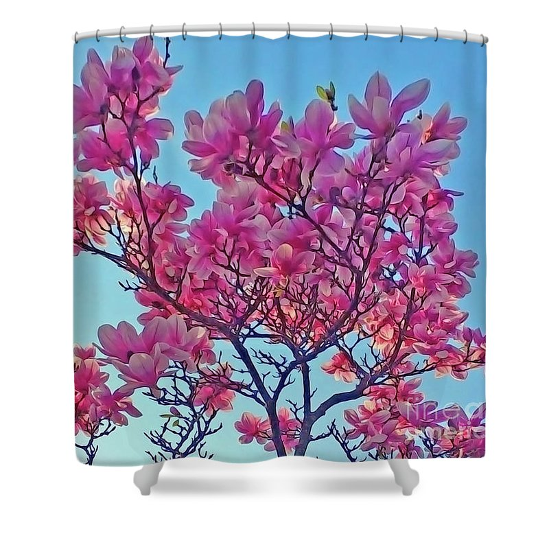 Magnolia Shower Curtain featuring the photograph Glowing Magnolia by Jasna Dragun