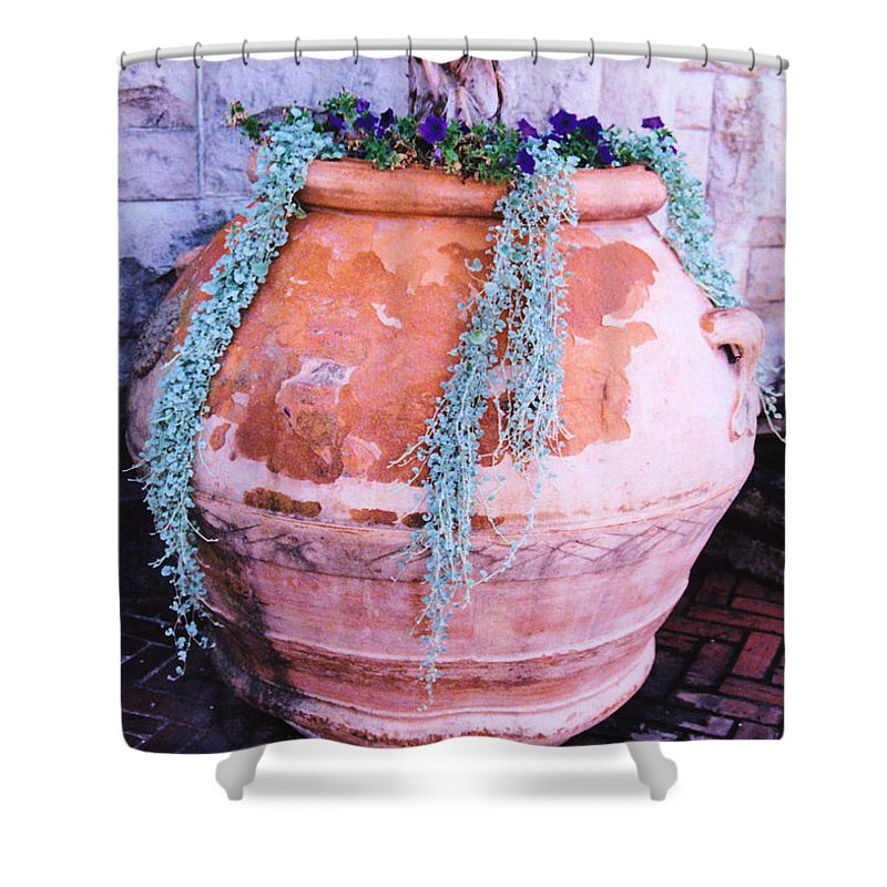 Still Life Shower Curtain featuring the photograph Going To Pot by Jan Amiss Photography