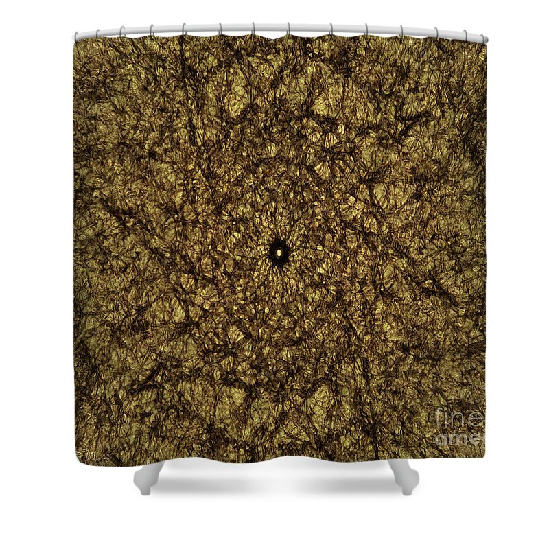 Gold Shower Curtain featuring the photograph Gold Rush by Teresa Wilson