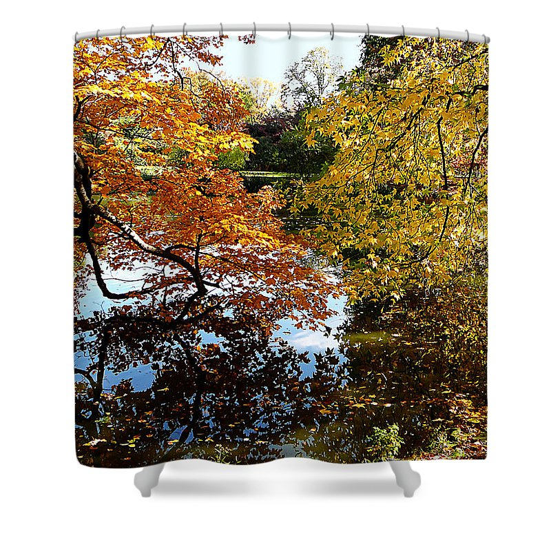Autumn Shower Curtain featuring the photograph Golden Autumn Trees by Susan Savad