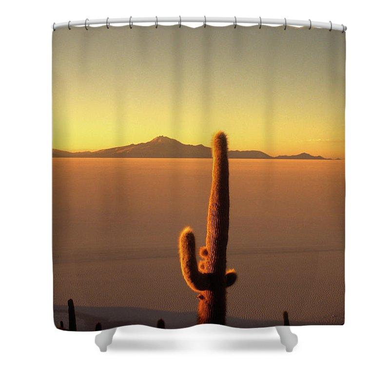 Salar De Uyuni Shower Curtain featuring the photograph Golden Cactus Sunset by James Brunker