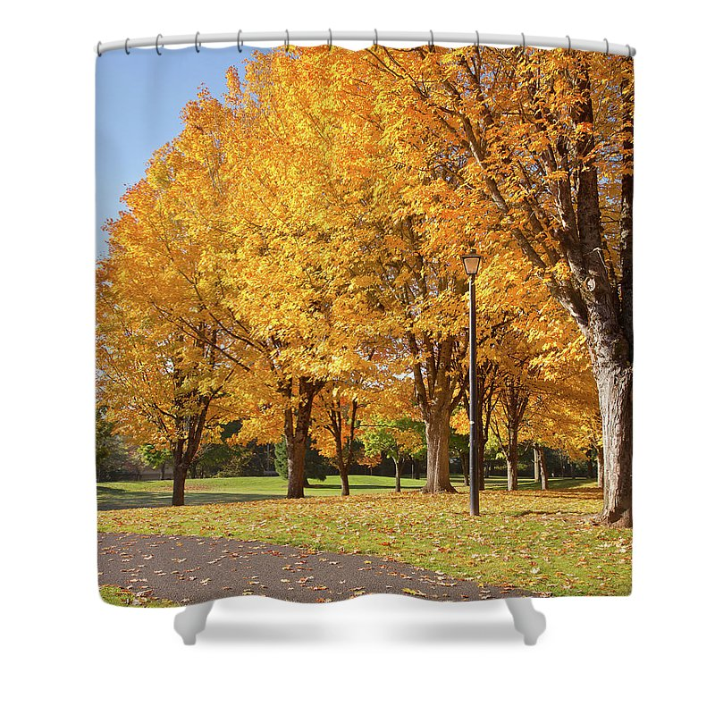 Yellow Shower Curtain featuring the photograph Golden Colors In Autumn Bellavista Park Oregon. by Gino Rigucci