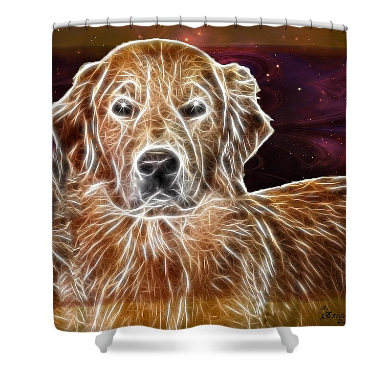 Dog Shower Curtain featuring the photograph Golden Glowing Retriever by Ericamaxine Price
