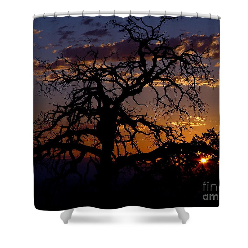 Sunset Shower Curtain featuring the photograph Golden Hour by Peter Piatt