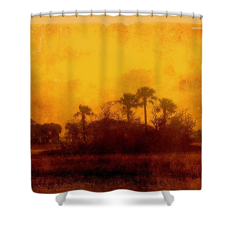 Palm Trees Shower Curtain featuring the photograph Golden Land by Susanne Van Hulst