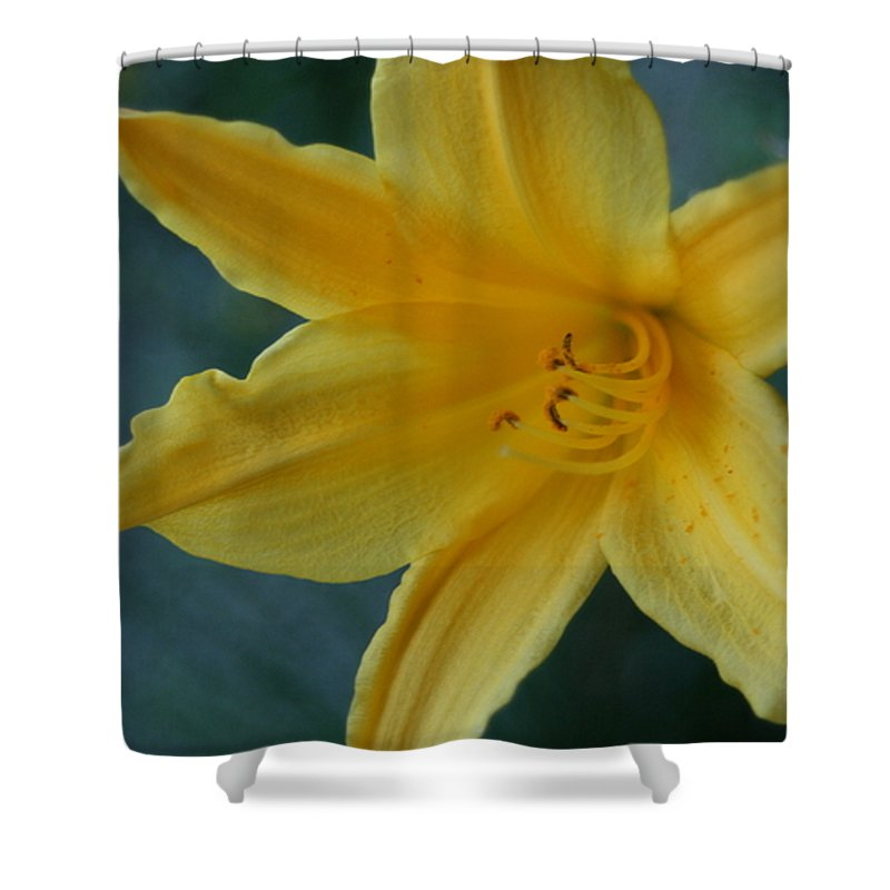 Shower Curtain featuring the photograph Golden Lily 2 by Barbara S Nickerson