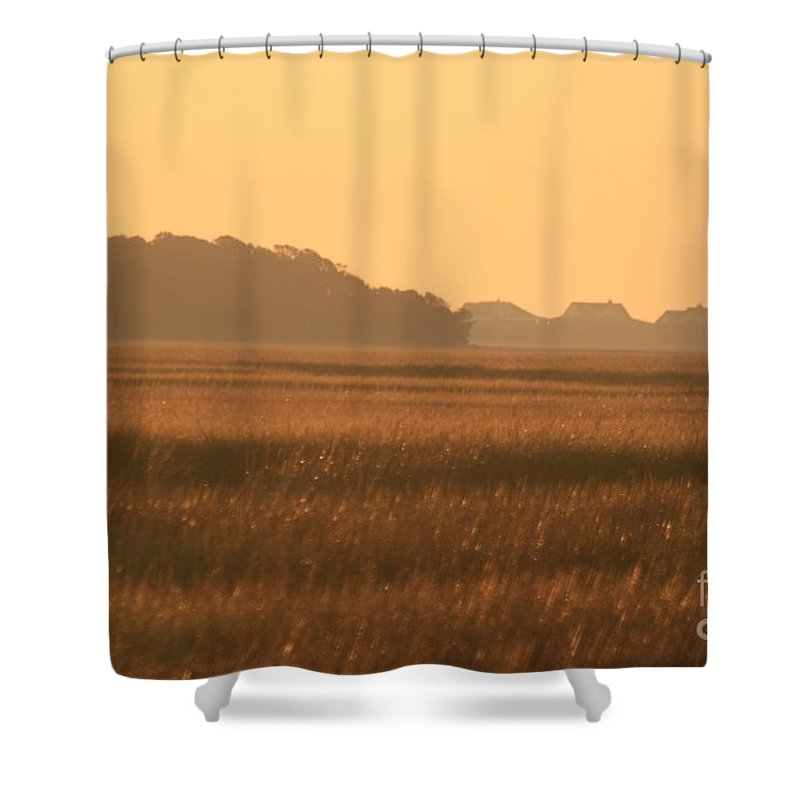 Marsh Shower Curtain featuring the photograph Golden Marshes by Nadine Rippelmeyer