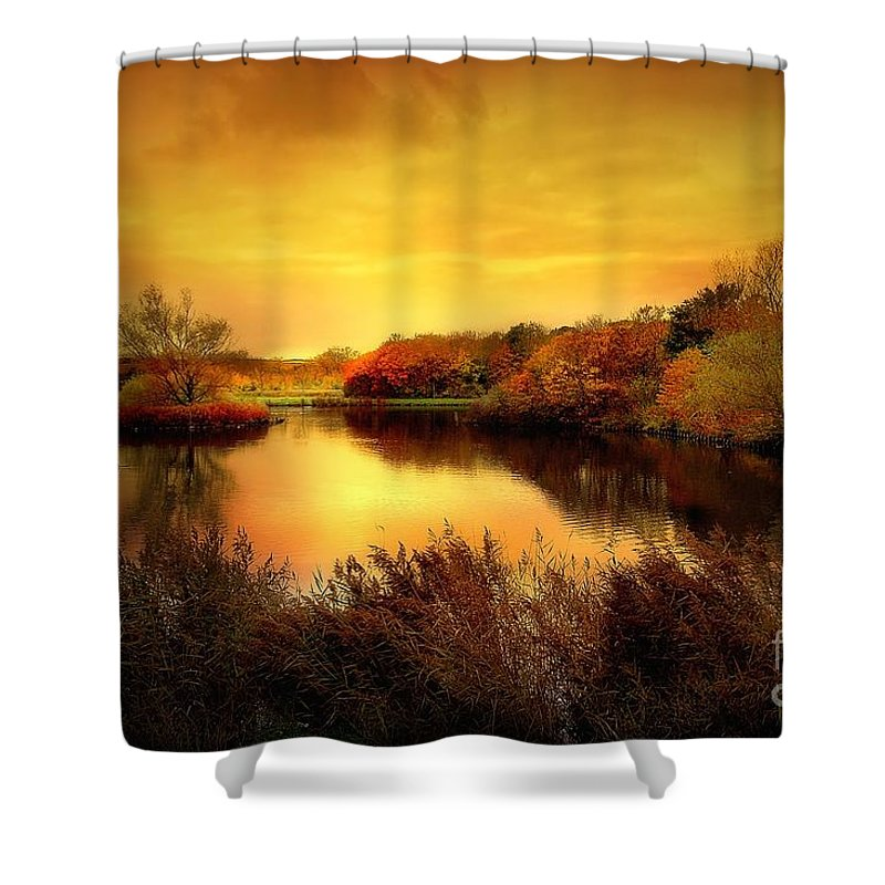 Pond Shower Curtain featuring the photograph Golden Pond by Jacky Gerritsen