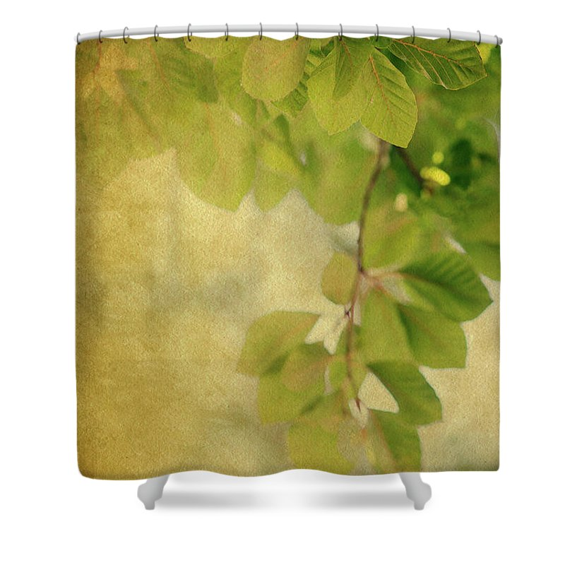Leaves Shower Curtain featuring the photograph Golden by Rebecca Cozart