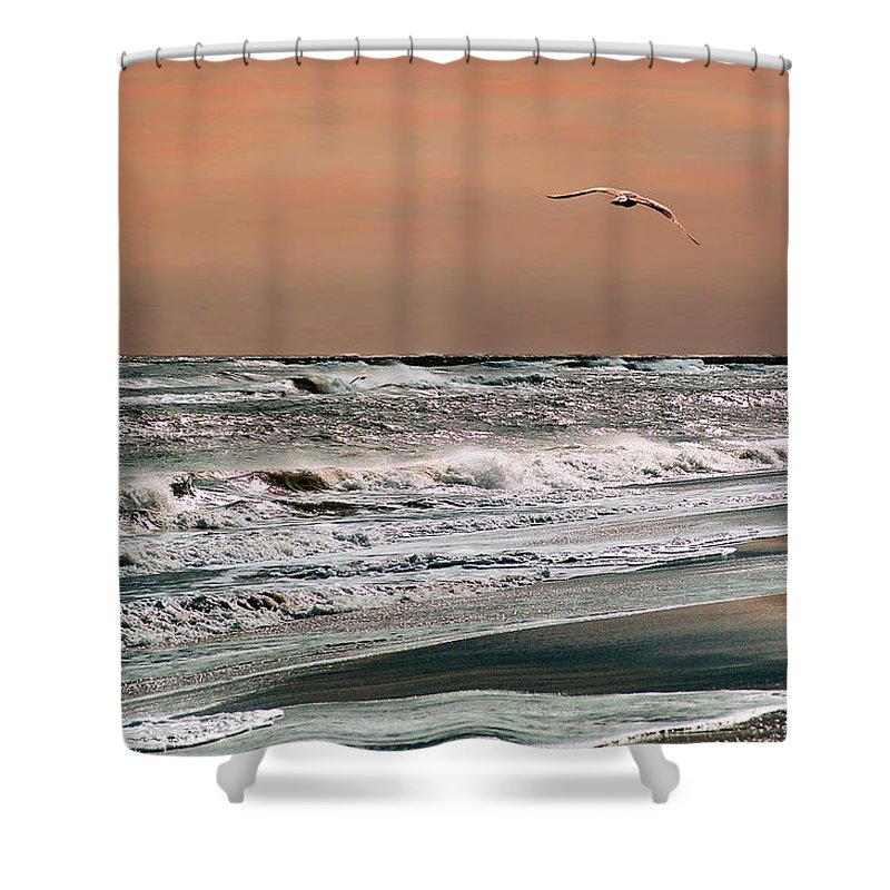 Seascape Shower Curtain featuring the photograph Golden Shore by Steve Karol