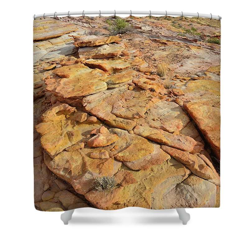 Valley Of Fire State Park Shower Curtain featuring the photograph Golden Slopes Of Valley Of Fire State Park by Ray Mathis
