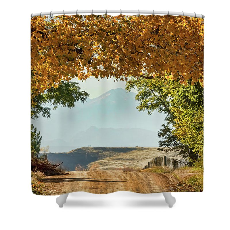 Roads Shower Curtain featuring the photograph Golden Tunnel Of Love by James BO Insogna