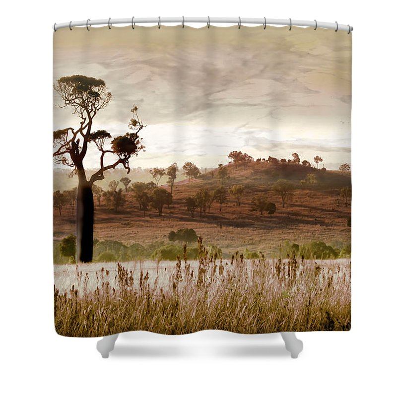 Landscapes Shower Curtain featuring the photograph Gondwana Boab by Holly Kempe