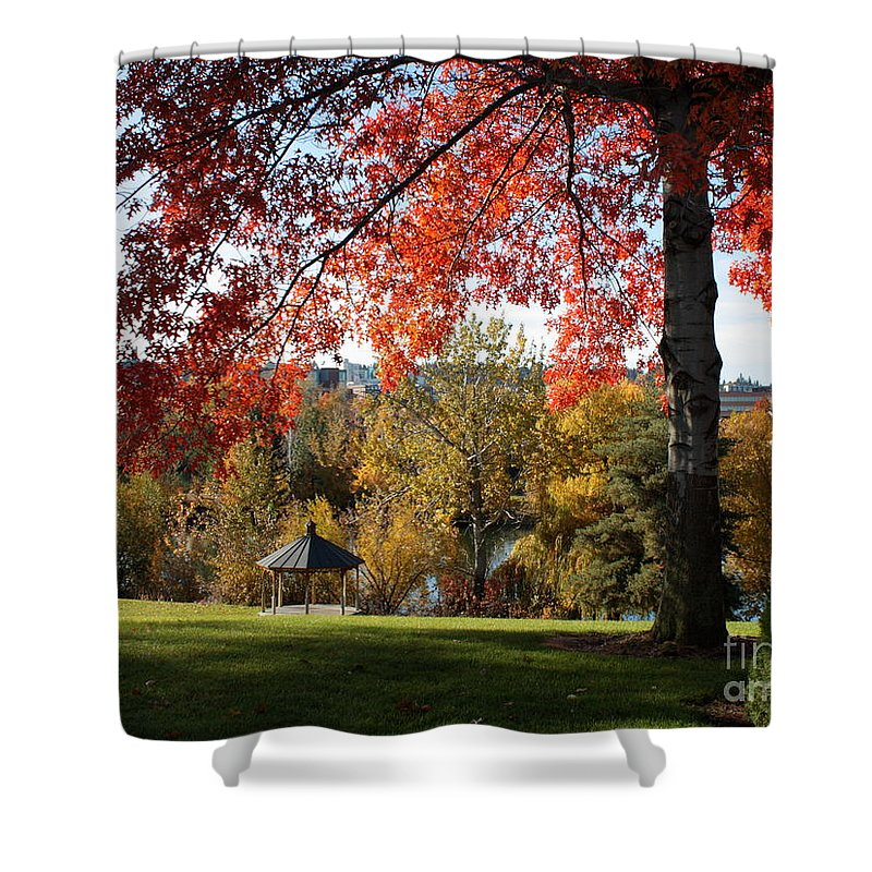 Spokane Shower Curtain featuring the photograph Gonzaga With Autumn Tree Canopy by Carol Groenen