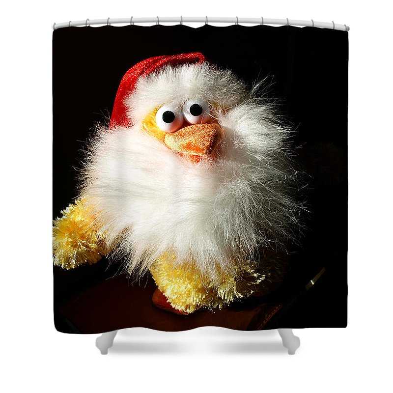 Evil; Good; Chicken; Bird; Stuffed; Animal; Fowl; Christmas; Beard; Hat; Bad; Sunshine; Barnyard; Du Shower Curtain featuring the photograph Good Chicken by Allan Hughes