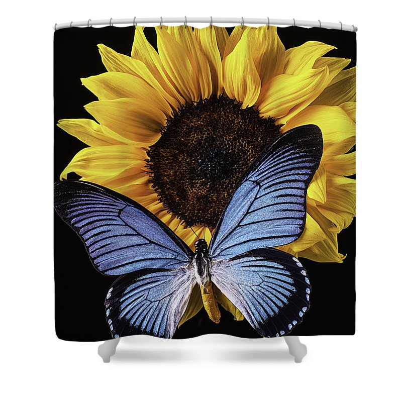 Vertical Shower Curtain featuring the photograph Gorgeous Blue Butterfly by Garry Gay