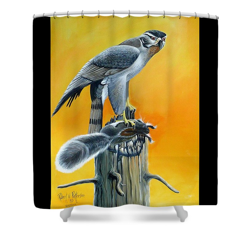 Wildlife Shower Curtain featuring the painting Goshawk by Bob Patterson