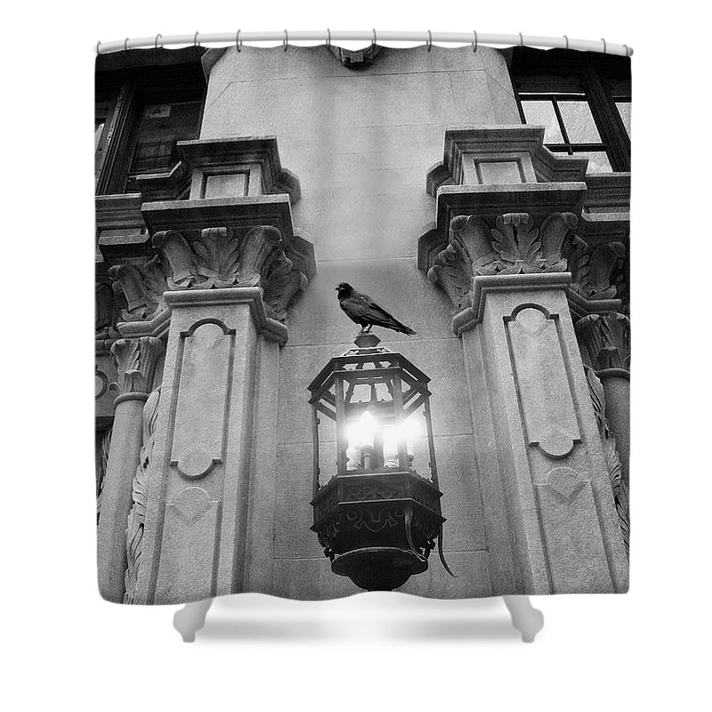 Raven Crow Art Shower Curtain featuring the photograph Gothic Surreal Black White Raven On Lantern Lamp Post by Kathy Fornal