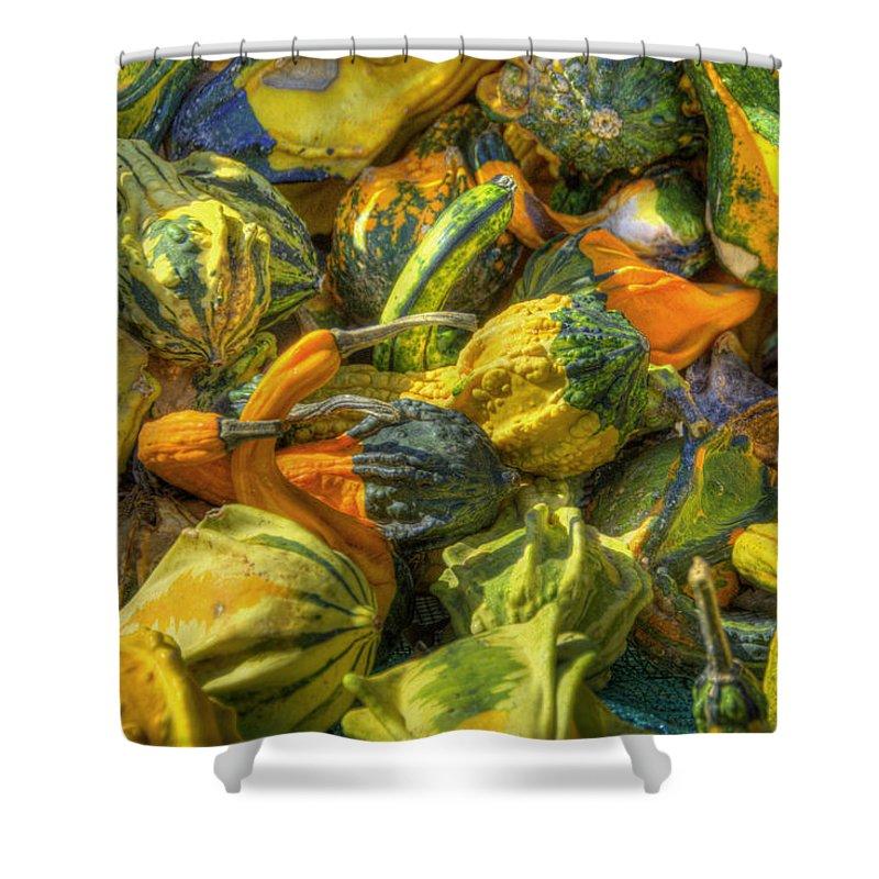 Farmlife Shower Curtain featuring the photograph Gourds by Sam Davis Johnson