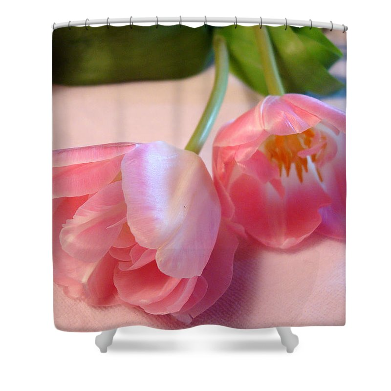 Kathy Bucari Shower Curtain featuring the photograph Grace by Kathy Bucari