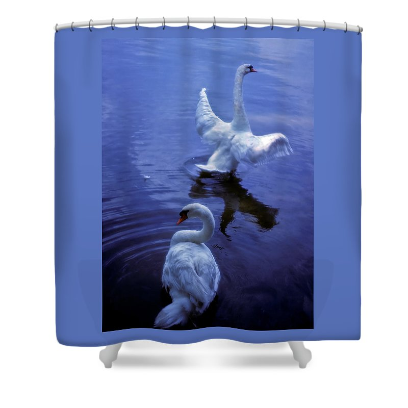 Swan Shower Curtain featuring the photograph Graceful Swans by Marie Hicks
