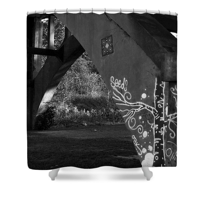 Bridge Shower Curtain featuring the photograph Graffiti Bridge by Ayesha Lakes
