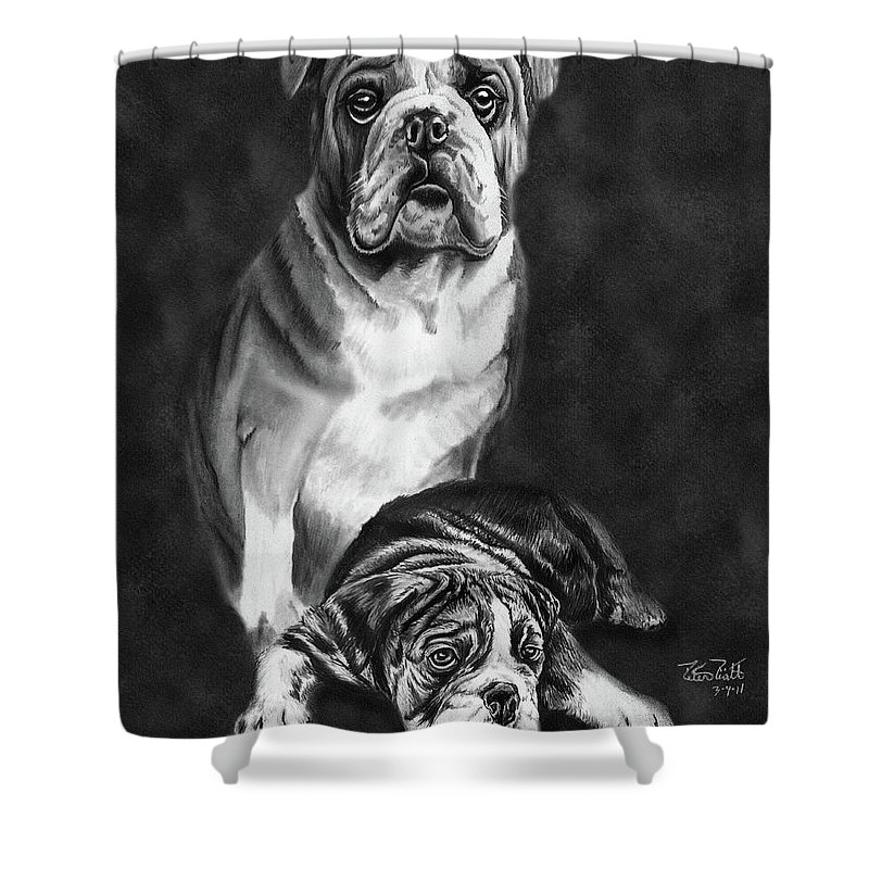 Grandson Of Sampson Shower Curtain featuring the drawing Grandson Of Sampson by Peter Piatt
