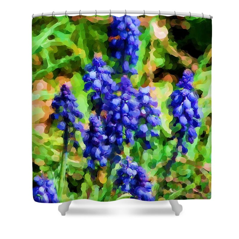Grape Hyacinths Shower Curtain featuring the photograph Grape Hyacinths by David Lane