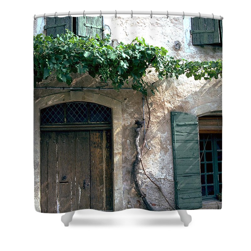 Grapevine Shower Curtain featuring the photograph Grapevine by Flavia Westerwelle