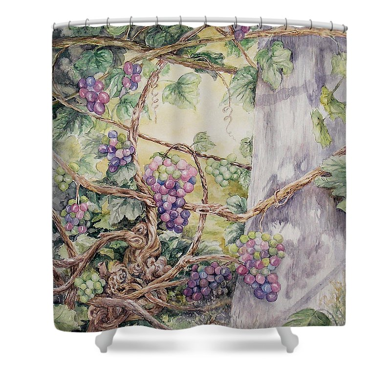 Vines Shower Curtain featuring the painting Grapevine Laurel Lakevineyard by Valerie Meotti