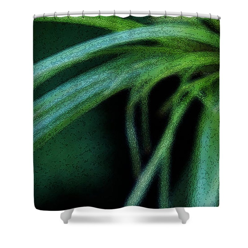 Grass Shower Curtain featuring the photograph Grass Dance by Linda Shafer