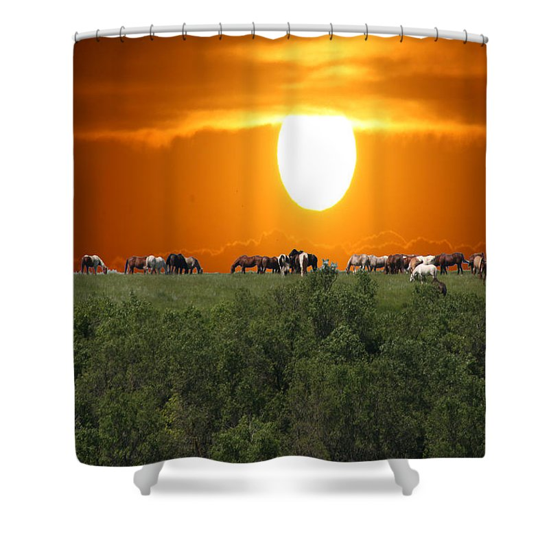 Horses Herd Sunset Grass Trees Nature Animals Scenery Sun Shower Curtain featuring the photograph Grazing by Andrea Lawrence
