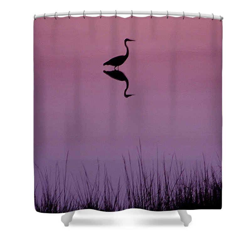 Great Blue Heron Shower Curtain featuring the photograph Great Blue Heron IIi by Brett Winn