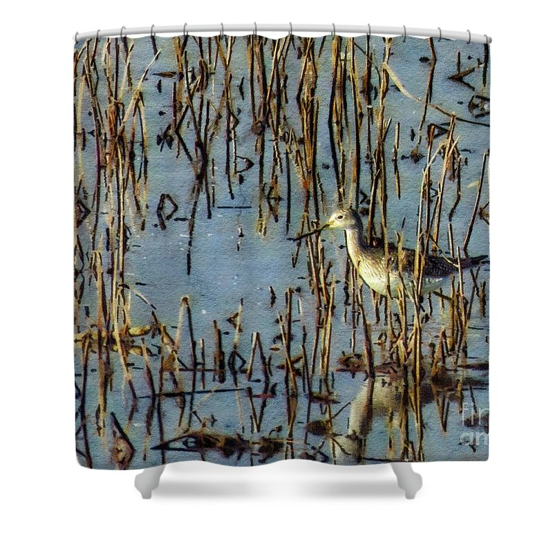 Fowl Shower Curtain featuring the photograph Greater Yellowleg In Reeds by Rrrose Pix
