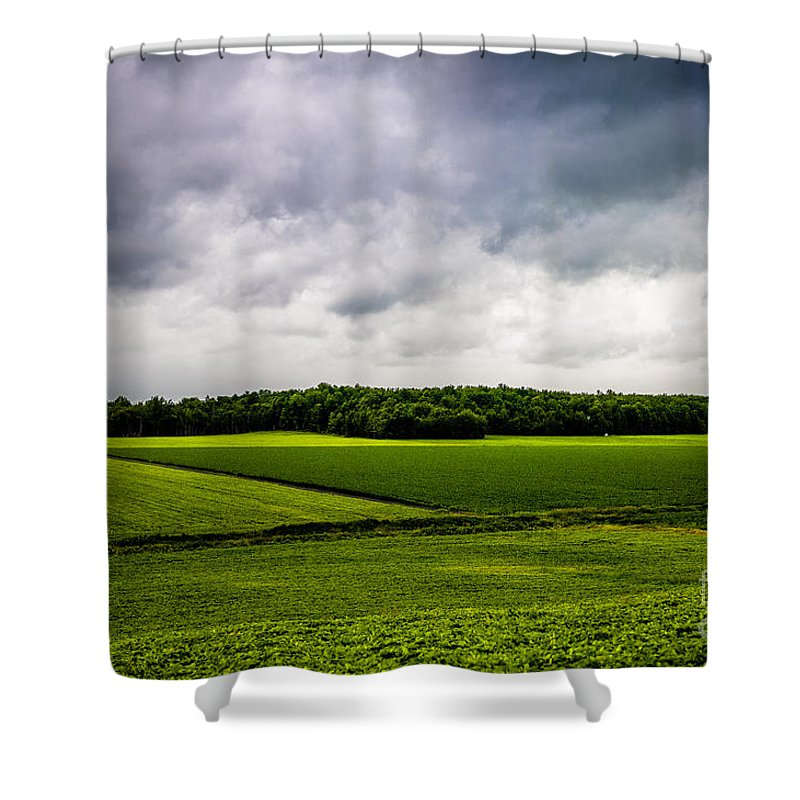 Green Fields Shower Curtain featuring the photograph Green Fields by M G Whittingham