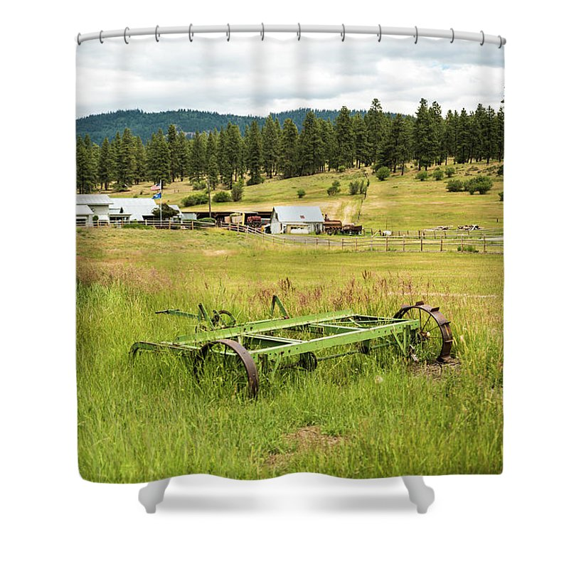 Tenaway Creek Shower Curtain featuring the photograph Green Grass Grew All Around by Tom Cochran
