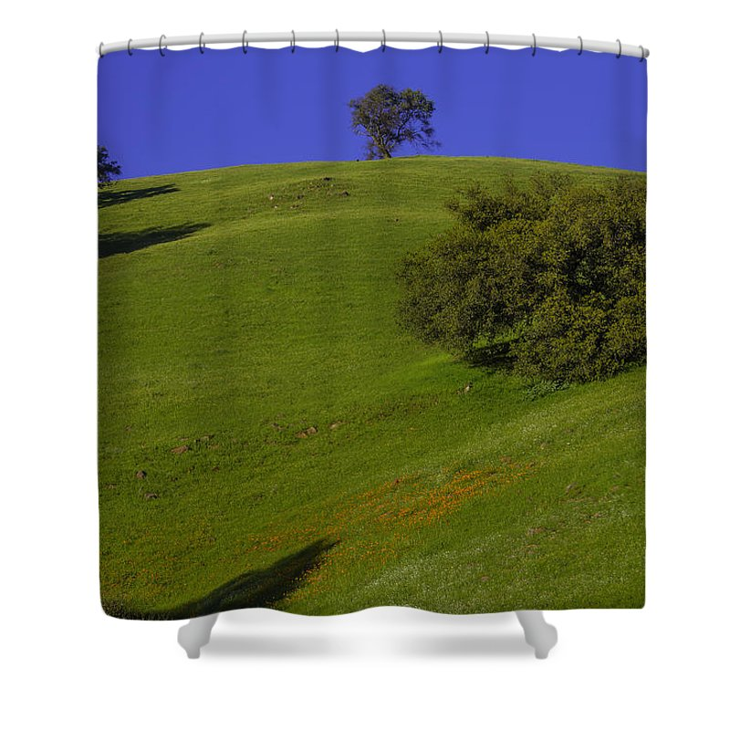 Hill Side Shower Curtain featuring the photograph Green Hill With Poppies by Garry Gay