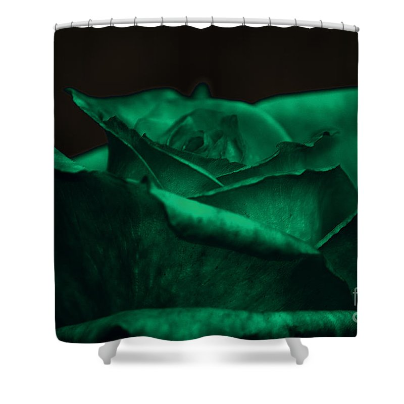 Clay Shower Curtain featuring the photograph Green Rose by Clayton Bruster