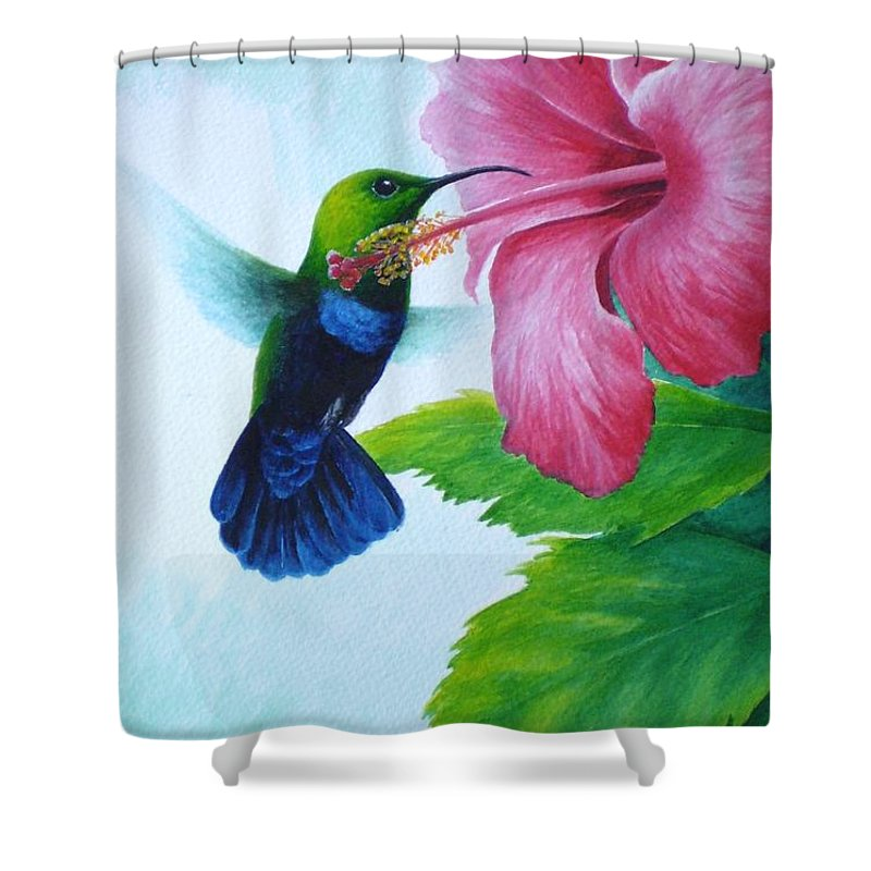 Green-throated Carib Hummingbird Shower Curtain featuring the painting Green-throated Carib And Pink Hibiscus by Christopher Cox