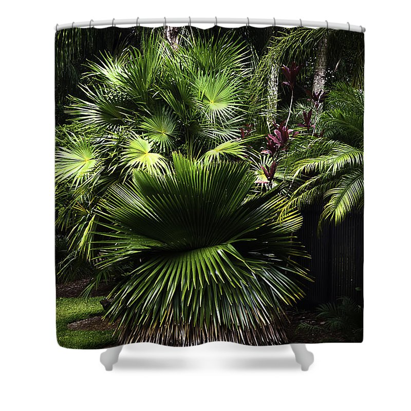 Nature Shower Curtain featuring the photograph Green With Envy by Camille Lopez