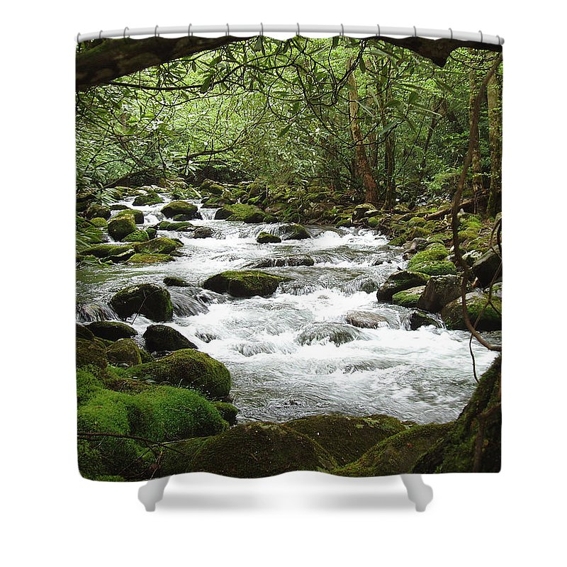 Smoky Mountains Shower Curtain featuring the photograph Greenbrier River Scene 2 by Nancy Mueller
