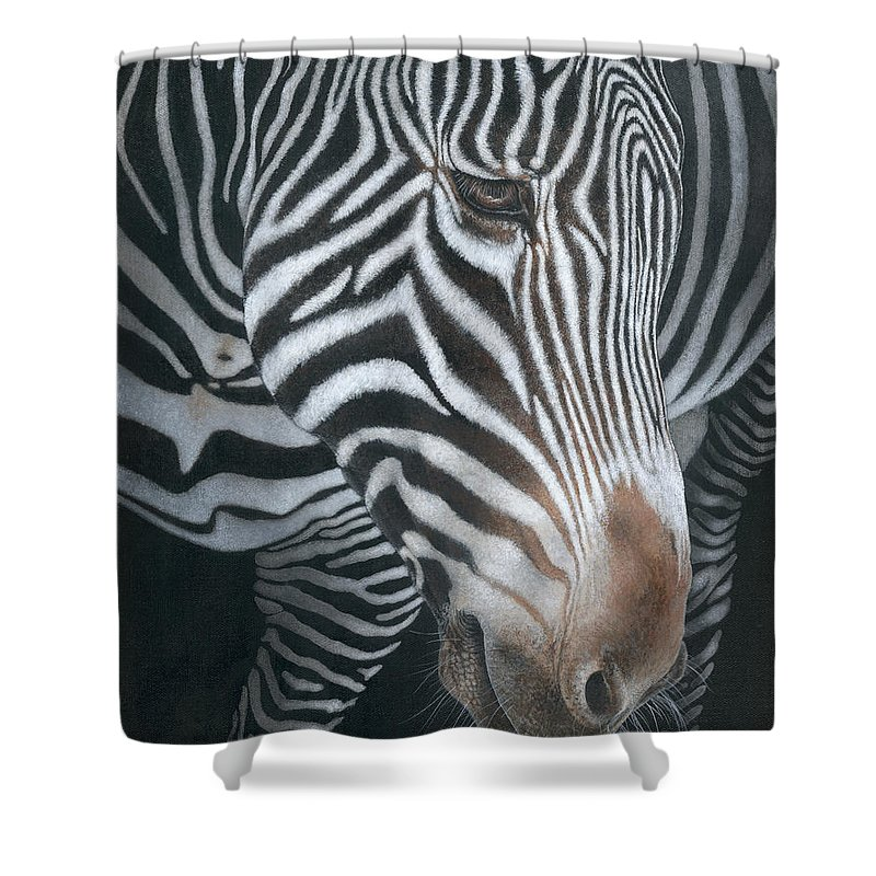 Wildlife Shower Curtain featuring the painting Grevy's Zebra by Edmund Price