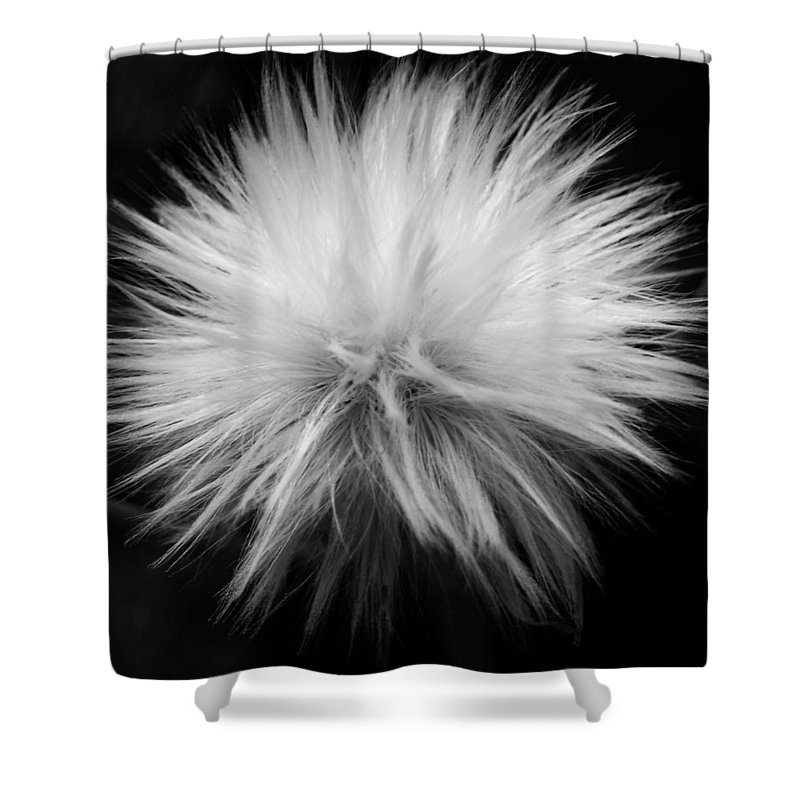 Garden Shower Curtain featuring the photograph Grey Hairs by Juergen Weiss