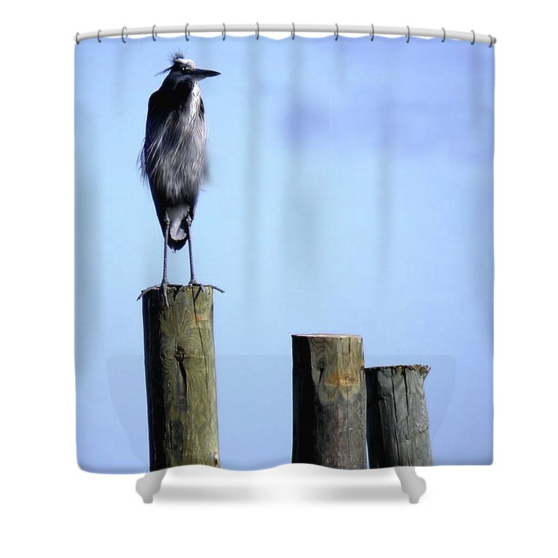 Birds Shower Curtain featuring the photograph Grey Heron On A Pole by Angelcia Wright