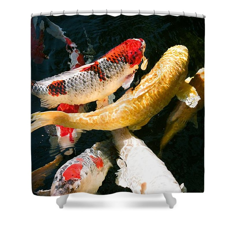 Fish Shower Curtain featuring the photograph Group Of Koi Fish by Dean Triolo