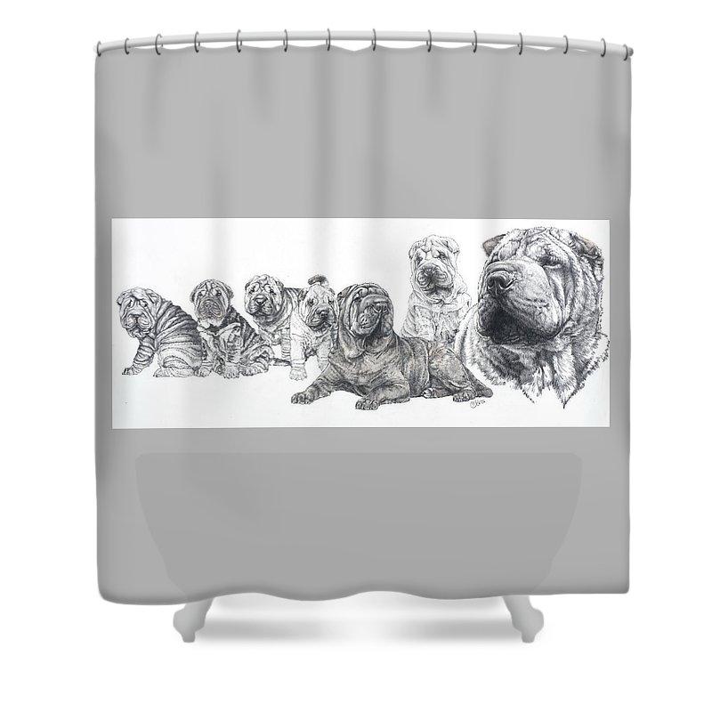 Non-sporting Group Shower Curtain featuring the drawing Growing Up Chinese Shar-pei by Barbara Keith
