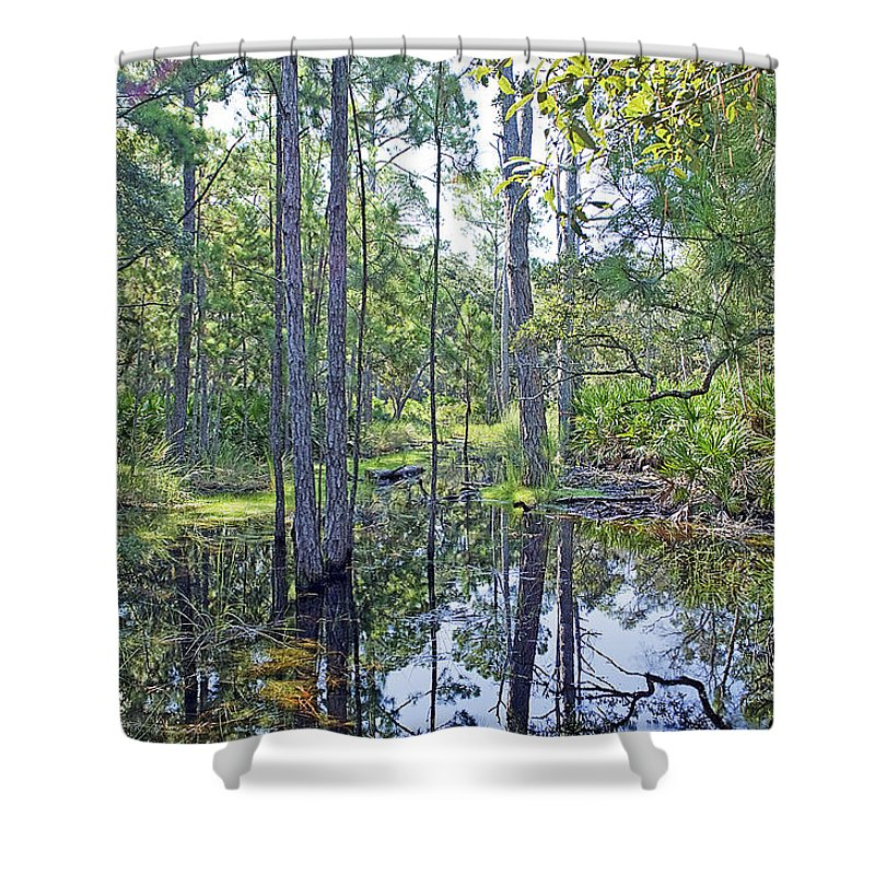 Marsh Shower Curtain featuring the photograph Guana Marsh by Kenneth Albin