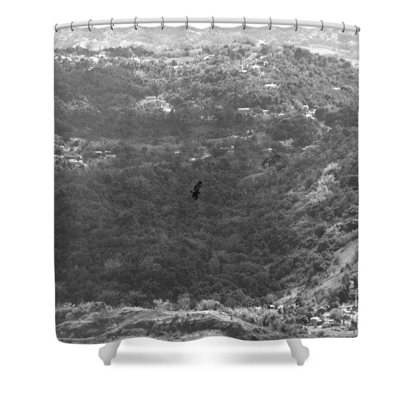 Bird Shower Curtain featuring the photograph Guaraguao Bw by Gilberto Marcano